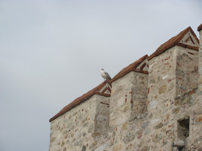 kız kulesi 4