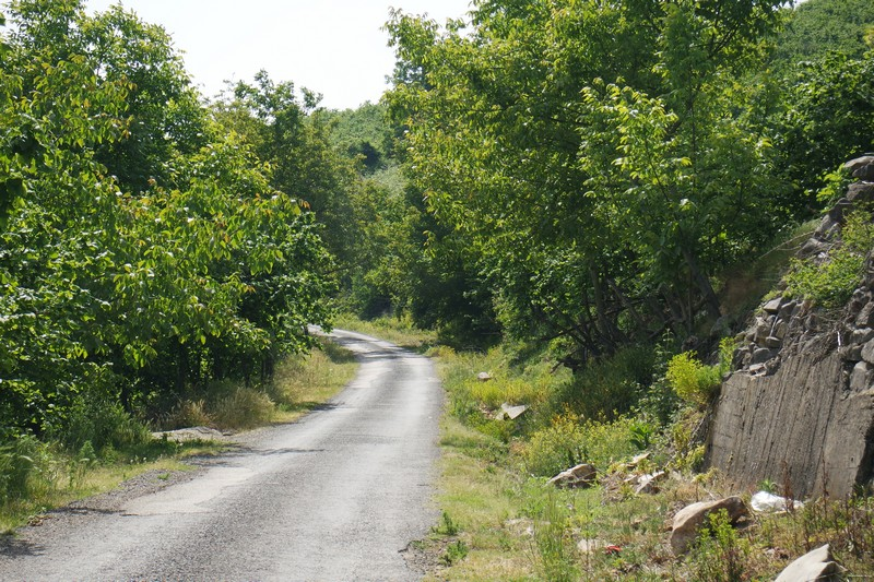 Aktaş şelalesi yolu