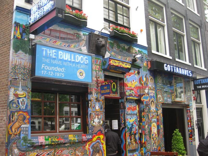 Amsterdam-Bulldog