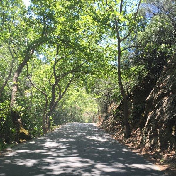 Plomari-Yol